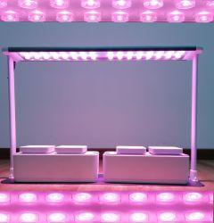 Alta Potência Premium de alta qualidade Full Spectrum Jardim Interior Home Iluminação Hidroponia IP67 UL/CE/FCC 30W estufas familiares LED no painel à prova de luz crescer
