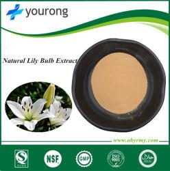 공장 가격을%s 가진 ISO Certificatied 제조자 공급 100%Natural Lilium Brownii var. Viridulum 추출