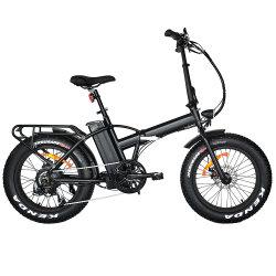 Jd-20A06-3 che piega la bicicletta elettrica adulta della gomma di Ebike 48V 500W del popolare della gomma grassa grassa di Ebike