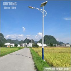 第二世代太陽電池パネル40W 50W 60Wが付いている別の屋外LEDの太陽通りの庭の道のホームランプ