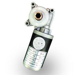 변하기 쉬운 속도 전동기 높이 조정 D49d1-2430-120를 위한 24 볼트 DC 모터