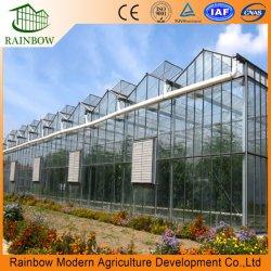 Los productos de China jardín invernadero de cristal de la granja la plantación de fruta/Vegetal/flor
