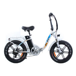 20 * 4.0 Fette Reifen-Falz Ebike Fat Tire Adult Electric Bicycle