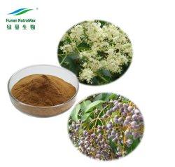 Nahrungsergänzungsmittel Glossy Privet Fruit Powder Oleanolic Acid 25%-98% Ligustrum Lucidum-Extrakt