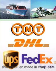 出荷の空気Freight& DHL TNT UPS Federal Express配達速達