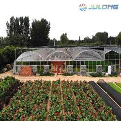 Installation facile de fruits et légumes de serre de Film multi-span