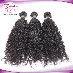 Usine vierge de gros malaisien des cheveux bouclés de Tissage de cheveux