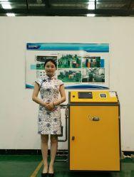 La Chine Zmc (tamis moléculaire de zéolite) générateur d'oxygène PSA