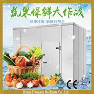 Chambre froide salle de stockage Salle de gel pour les fruits et légumes et viande