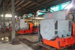 Новая конструкция 500квт два этапа уголь газ природный газ мощность генератора завод