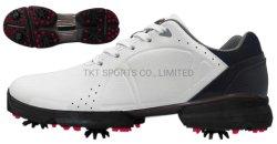 가득 차있는 털쪽을 겉으로 하여 다듬은 가죽 및 빠른 끈목 및 Membrance 양말 방수 기술 +Memory 거품 Insole+ Softspikes TPU 골프 스포츠 단화가 골프에 의하여 구두를 신긴다