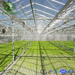 Les matériaux de construction en verre trempé pour l'usine et de légumes de serre