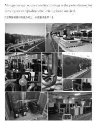 Pompa termica di titanio del raggruppamento di nuotata delle coperture dell'acciaio inossidabile dello scambiatore di calore del riscaldatore di acqua del raggruppamento