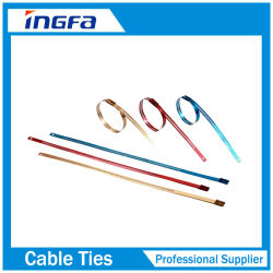 Verrouillage Multi 316L Barb revêtement époxy attache de câble en acier inoxydable de type de l'échelle