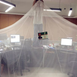 100%年の保護ポリエステル蚊帳のMosquiteiro Llinの蚊帳