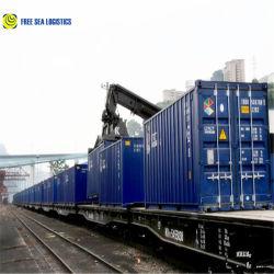 Custom Limpando Agente Marítimo em Guangzhou Shenzhen China