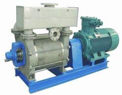 2bec Vacuümpomp van de Compressoren van de Ring van het Water van de reeks de Vacuüm voor Industrie van het Document