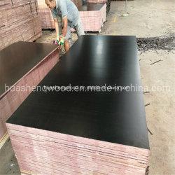 Filme Negro duas vezes pressionado quente construção madeira contraplacada de obturador