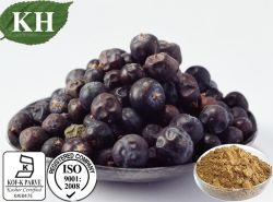 Kingherbs 100% 자연적인 로뎀 나무 열매 추출 비율 추출 4:1,
