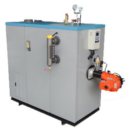 De geschatte Generator Met gas van de Stoom van de Capaciteit 300kg/H van de Stoom