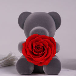 Echte erhaltene Rosenbär - Ewige Rose Teddy Bear Geschenkbox Handgefertigte frische Rose Geschenk für sie am Geburtstag, Weihnachten, Muttertag, Valentinstag