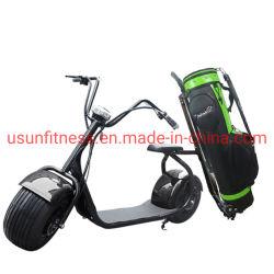 Carrello di golf elettrico dei motorini della bici del motociclo del triciclo dei Cochi della città del motorino di golf di terreno da golf