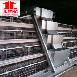 Jinfeng galvanisé à chaud de la batterie de l'équipement de couche de la cage de poulet de la volaille