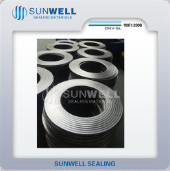Cmgの金属のシーリングガスケットの波形のグラファイトのガスケット(SUNWELL)