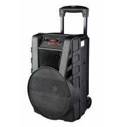 "12"" Outdoor Leistungsstarke Sound-Schrank Digitalverstärker Promotion Karaoke-Party PA Trolley lauter Aktivlautsprecher mit Akku und Multimedia Bluetooth Mikrofon"