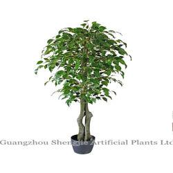 Bonsai artificiales Ficus microcarpa (plantas)