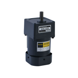 100V/110V/220V 6W 10W motorreductor eléctrico AC