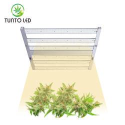 600W Indoor LED à spectre complet de plantes grandir la lumière des cintres réglable pour des semis de succulents fruits de Veg fleur