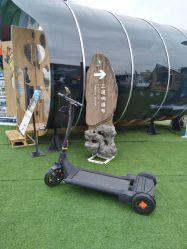 De nieuwe Legering van Magnisum van het Ontwerp, ABS In evenwicht brengende Autoped van de Mobiliteit van de Dekking de Elektrische