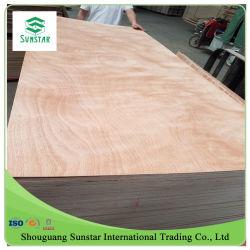 1220*2440 bb bb/CC/bb Grade Bintangor Okoume//crayon Cedar/Keruing/ Poplar/ Birch-PIN/Maple/ feuille de placage bois contreplaqué commercial pour le mobilier
