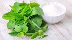 Stevioside природных пищевых добавок