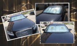 Zonnescherm het van uitstekende kwaliteit van de Auto voor Verkoop