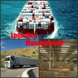 Gestão de logística da China para o mundo