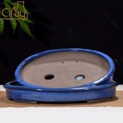 17 Polegadas Azul vidrada argila Roxa Bonsai pote da fábrica