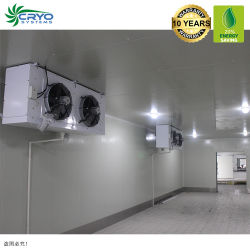 20 % d'énergie l'enregistrement de la viande de boeuf Distributeurs Outdoor Blast congélateur Wiki Cold Storage industriel standard aux produits congelés Durian coller