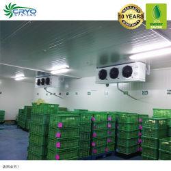 20 % энергии напитков дистрибьюторов низкотемпературных холодильных установок