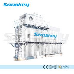 Китай Snowkey верхней части1 искусственный снег бумагоделательной машины для Кореи Австралии | рынок