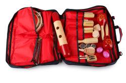 Il Musical stabilito dei bambini dei bambini dei capretti di percussione gioca gli strumenti