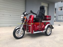 Gasolina de deficientes de triciclo 110cc