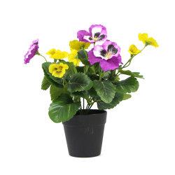 Sunwing umweltfreundlicher grüner Faux-eingemachte Pflanzen für Garten-Dekoration