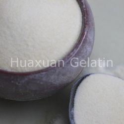 Venta caliente gelatina comestible en polvo