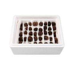 Truffes fraîches 2-3cm