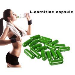 Природные быстро похудение чай ацетила L-карнитин для снижения веса капсулы