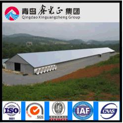 Estrutura de aço pré-fabricadas Casa de frangos de corte e galinhas de camada de casa para o Galpão Polutry
