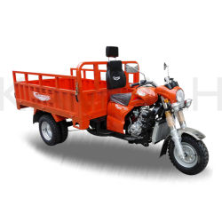 Tricycle à moteur 200cc Trike trois roues de l'essence de tricycle Tricycle Chargeur Moto Cargo 3 ROUE CHARIOT Coold tricycle de l'eau