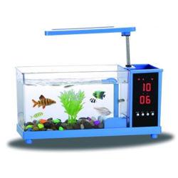 Réservoir d'alimentation d'usine de l'Aquarium, Mini-poissons d'Aquarium